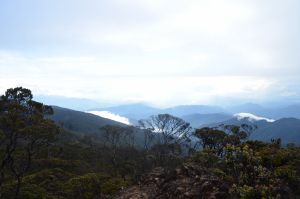 Landscape Perjalanan Ke Puncak